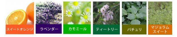 6種類のアロマオイル